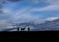 """morning commute"" horses, cowboy, silhouette, ""fine art photography"", ""western art"", Wyoming"